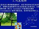 天然药物化学31-自考视频-西安交大-要密码到www.Daboshi.com