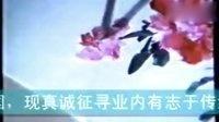 牡丹画法(主讲:王雪涛)