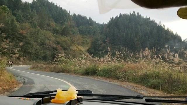 开车行驶在农村公路上,两边风景就是一个字 美