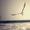 圣斗士星矢剧场版:圣域传说 精彩抢先看