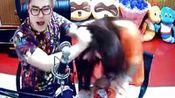 爆笑拔萝卜37mc.com—在线播放—优酷网,视频高清在线观看