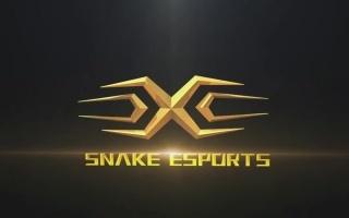 snake娱乐视频