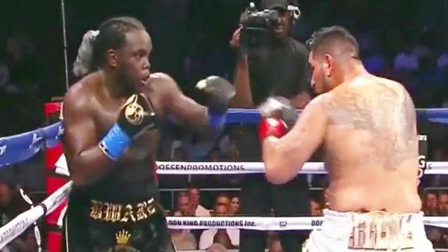 被维尔德秒杀的史蒂文内也曾辉煌过!重拳KO阿雷奥拉成重量级拳王