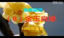 淮剧08金玉良缘(戴建民、周凤英)8:58