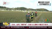 """[共度晨光]日本:台风""""博罗依""""已致10人遇难 半数死于车中"""