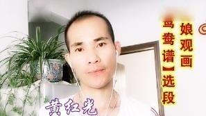 黄梅戏|歌手黄红光反串《惠娘观画》鸳鸯谱选段