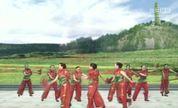 红色经典大众健身舞《山丹丹开花红艳艳》
