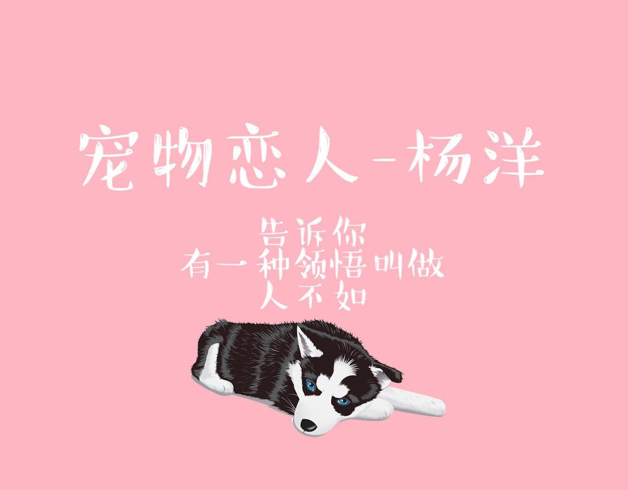 【杨洋】万象皆他-宠物恋人(混合风味的舔屏向?)
