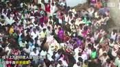 印度奇葩节日 互掷牛粪祈求健康-网罗天下热点-猪头传媒