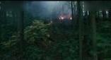 猩球崛起3.终极之战, 人类进攻猿猴领地结果被猿猴团灭。