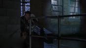 灵犬宾果    小狗的越狱   惊险刺激的一夜-英语流畅