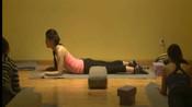 瑜伽练习视频:适合0基础学习的瑜伽课程,瑜伽入门知识教学视频