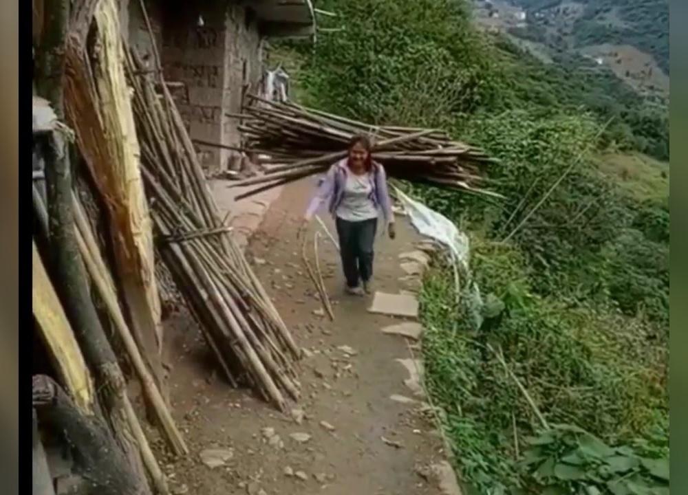 农村妇女山上扛柴回家煮饭,山路崎岖,看着真不是滋味
