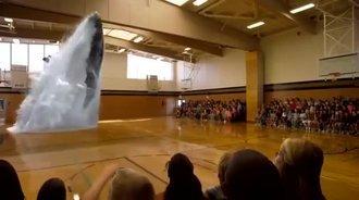 骄阳3D全息分享,鲸鱼跃水而出,直扑群众