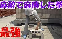 『拉斐爾』【中文字幕】打空心磚也不會痛?打麻醉把手變成最強幹架拳頭!!