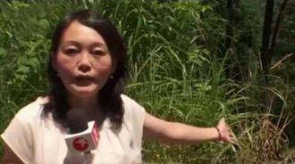 中国姐妹在日遇害,中国驻日大使馆:应加强自我保护意识
