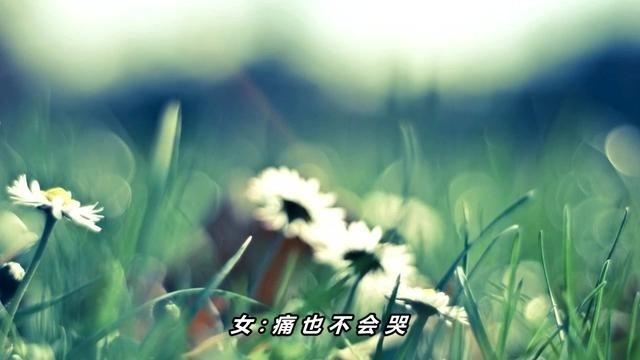 冷漠、司徒兰芳一首经典歌曲《痛也不会哭》好听极了!