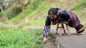 重庆农妇自幼双腿残疾 乐观生活用板凳当腿下地干活