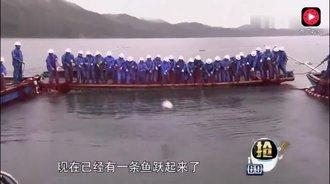 千岛湖捕鱼一网捞上68万斤,这才是真正的捕鱼达人