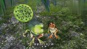 青蛙总动员:青蛙发现了一只小蚯蚓,想吃却中了圈套