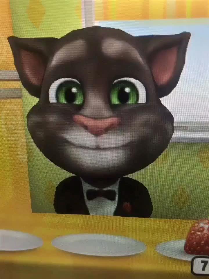 汤姆猫搞笑视频34