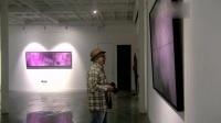【灿·烂】杨加勇北京首次个展(微拍全球·意象油画研究院)
