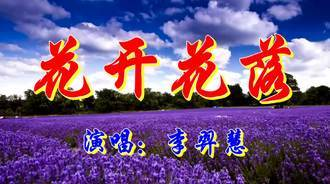 《木棉花的春天》主题曲《花开花落》