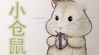 【小葩手绘】手绘小仓鼠、小葩教你学画画、彩铅画教程