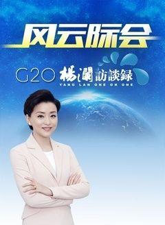 杨澜访谈录-G20峰会特别节目