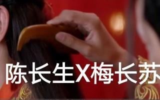 【陈长生X梅长苏】遇见你是我最美丽的意外