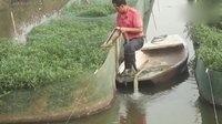 鳝鱼养殖技术