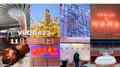 vlog#23 北京旅行/北京vlog/银杏/旅行vlog/北京美食/故宫/雍和宫/无印良品酒店/chao酒店/四季民福/春丽吃饭公司