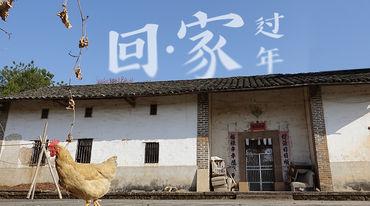 毕业回农村,逃离北上广,我不后悔!