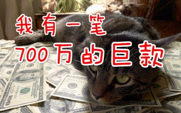 【猫神的日常】被彩票店阿姨勾引 买了80块钱彩票 心疼