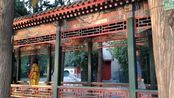 颐和园,AAAAA级旅游景区