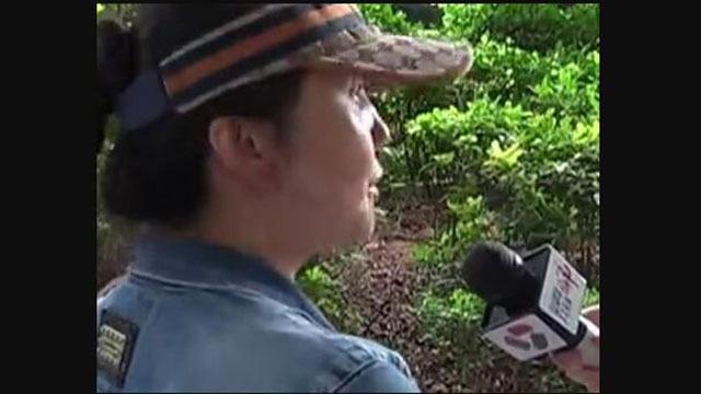 广东江门12岁少女沉迷网络直播打赏主播7万元