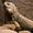 2018.08.15王楠楠 孟繁柱娘家答谢-生活-高清完整正版视频在线观看-优酷
