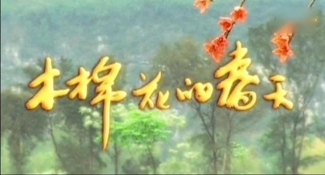 《木棉花的春天》主题曲——花开花落