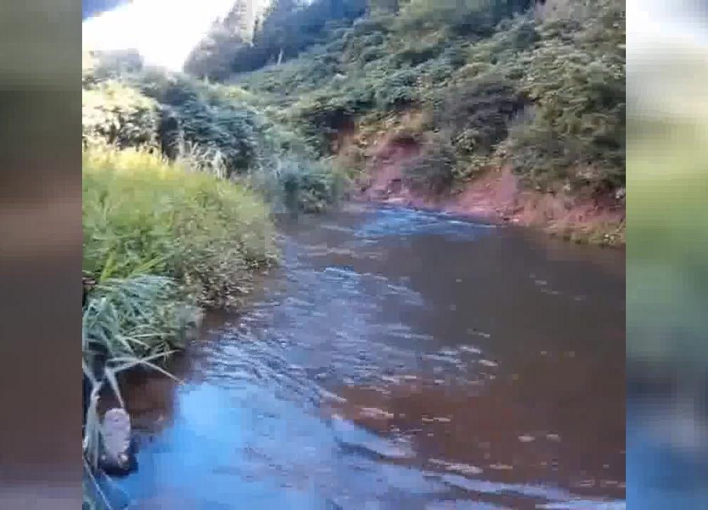 三农视野观察者:这么好的地方!路亚连竿野生小河鱼!