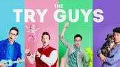 (the try guys)四人小分队的118种触发音,口腔音,轻语。时长感人