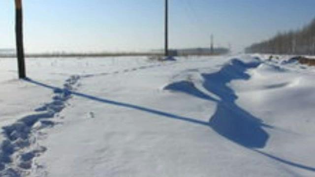 在农村,一位种地大户的自述:坚持了5年我却跑路了!