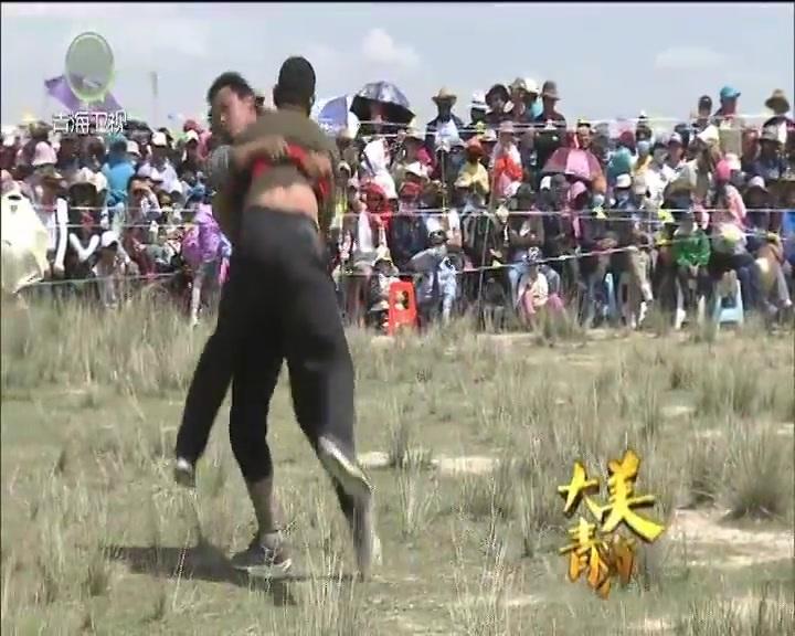 【青海卫视】《大美青海》栏目 20170831 草原上的狂欢(下)