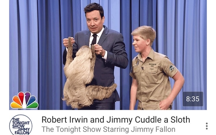 Robert lrwin and Jimmy Cuddle a Sloth生肉