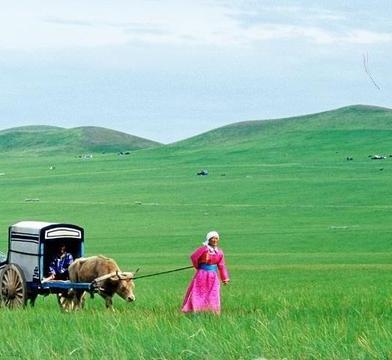 草原天籁!一首《 勒勒车上唱情歌》超好听!天籁之声!最美草原歌