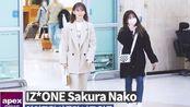 【IZONE】200121宮脇咲良·矢吹奈子-金浦入境新闻视频合集