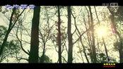 大片预告:《秋收起义》5分钟精彩片花