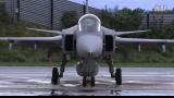 瑞典鹰狮战机