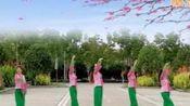 邹欢广场舞之忠爱一生舞队《三生三世十里桃花》