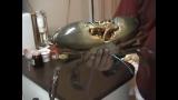 外国老哥烹调一只1.5公斤的大青蟹 How to Cook 1.5kg Mud Crab