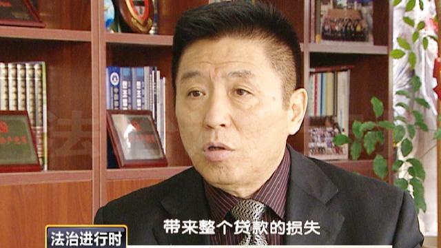 """""""马航失联""""庭前会议 律师解密案由(下)"""